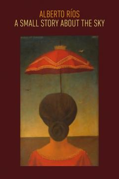 cover for book of poems with a woman under an umbrella