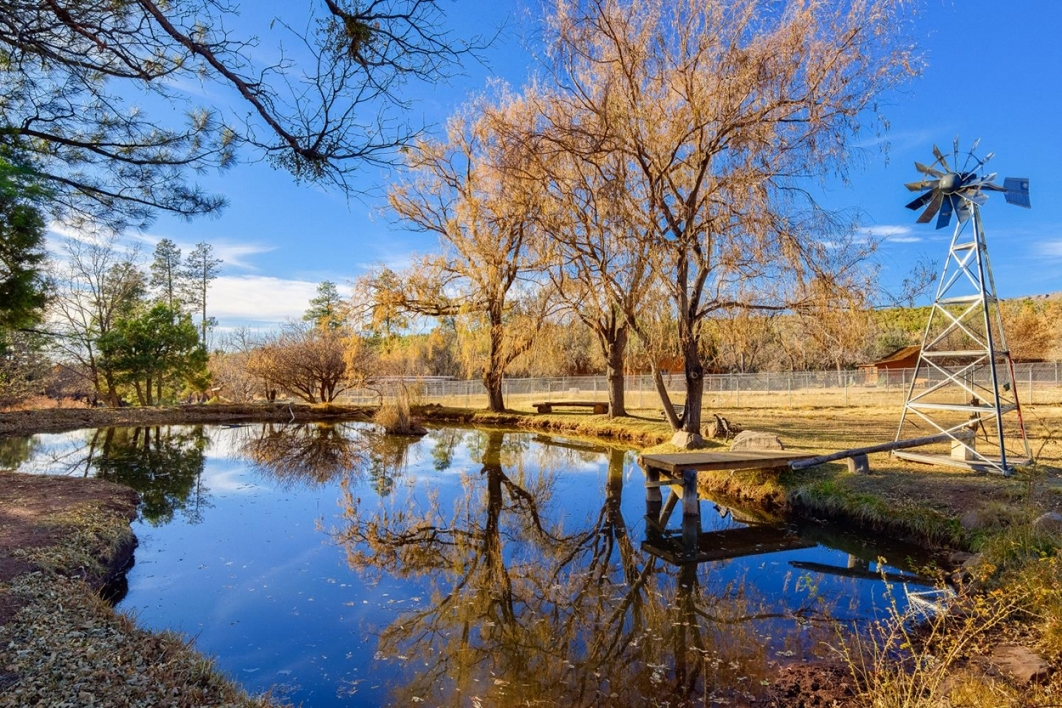 A pond reflects the blue sky, pine trees and windmill surrounding it.